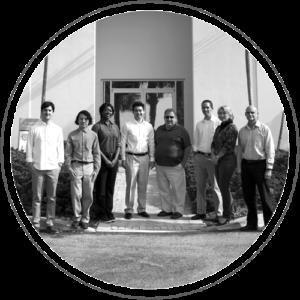 Daruma Team