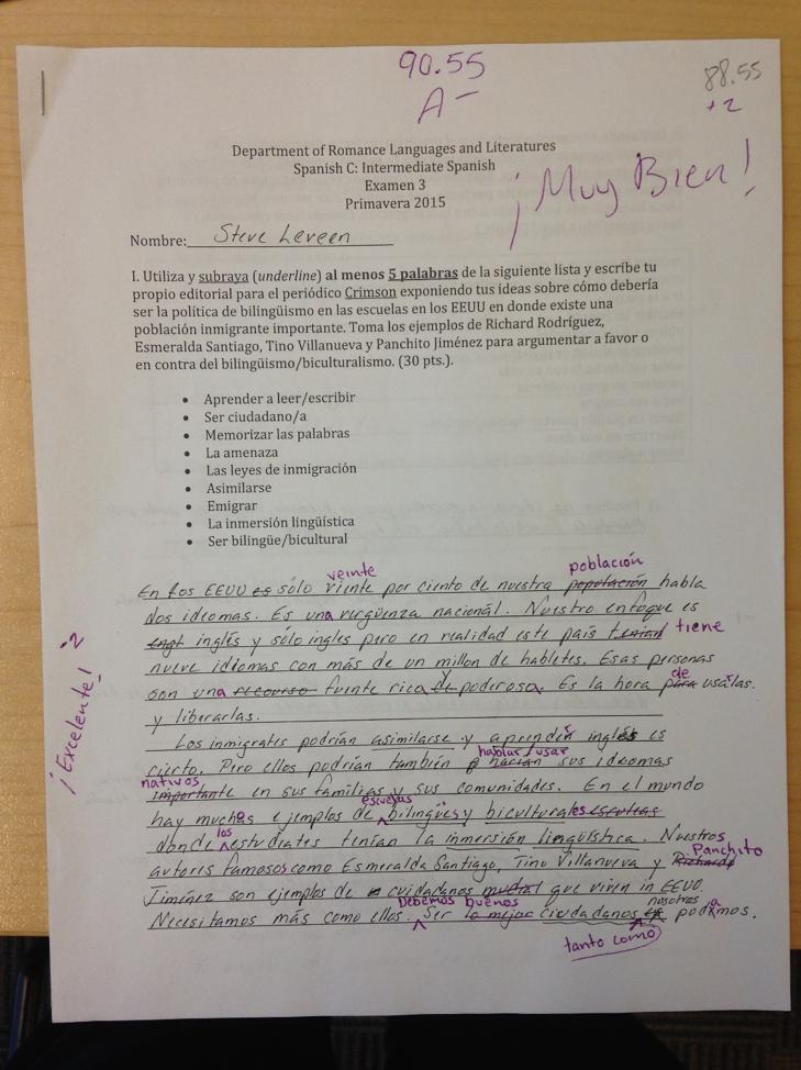 Steve Leveen's Spanish Test